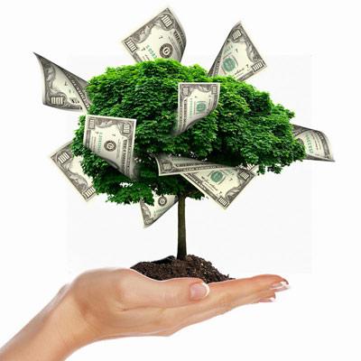 VLOG Миллионера: Обрезка денежного дерева